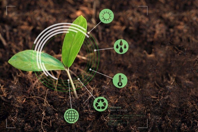 Επαγγέλματα Βιολόγων που σχετίζονται με τον Τομέα του Περιβάλλοντος